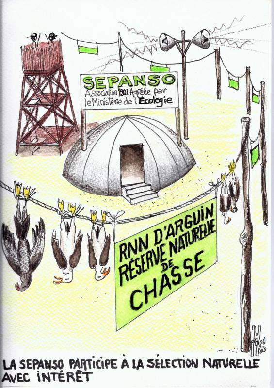 Sepanso re serve de chasse juin 2020